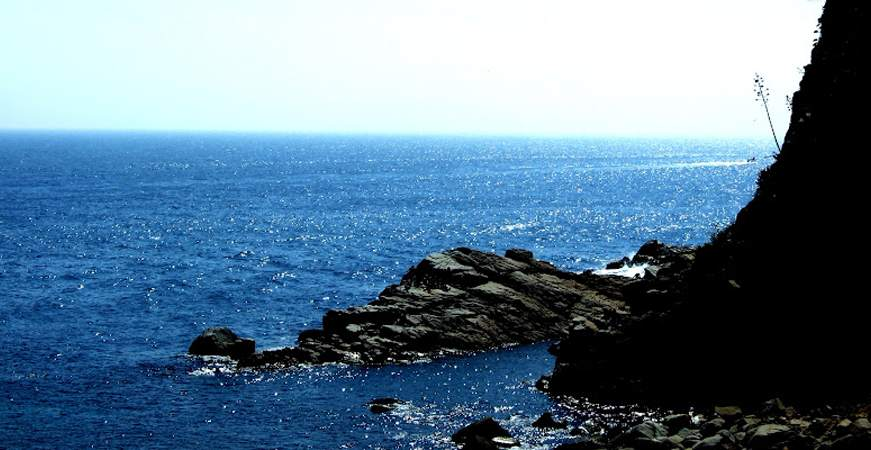 בסיג´ס חוף הזהב
